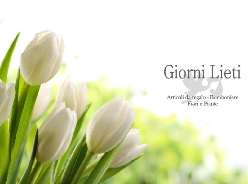 offerta fiori freschi recisi - occasione pianta da regalare - Giorni Lieti