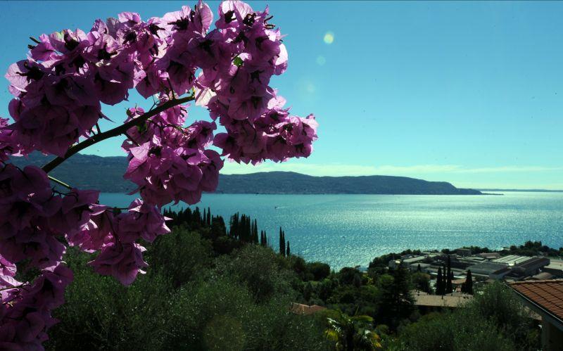Offerta residence lago di garda - Promozione bed and breakfast sul lago di Garda - Hotel