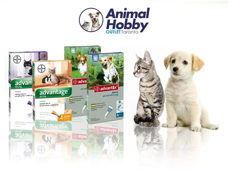 Offerta vendita antiparassitari cani e gatti - Promozione distribuzione antiparassitari