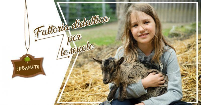 Offerta trattoria didattica per bambini - trattoria per ragazzi progetto scuole Erbanito