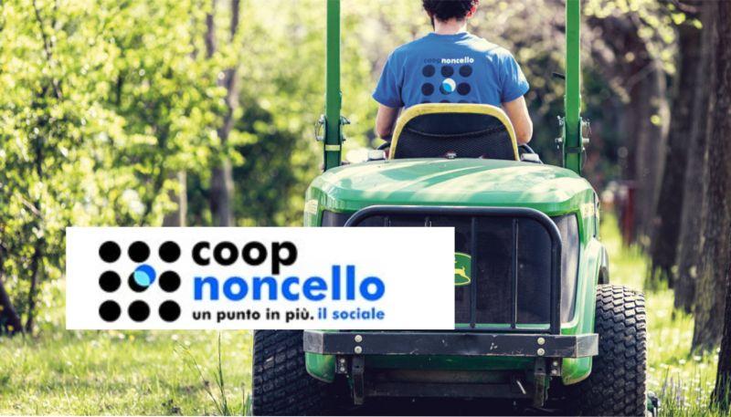 offerta manutenzione aree verdi pn - promozione realizzazione e manutenzione giardini pn