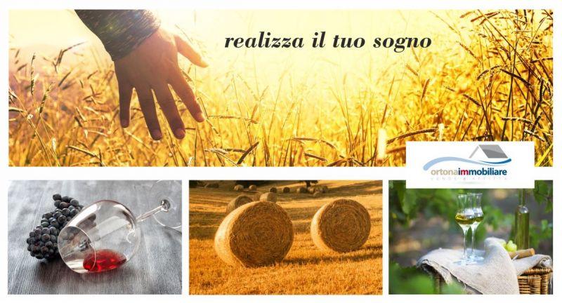 offerta vendesi terreno agricolo con casolare ortona - occasione vendita azienda agricola