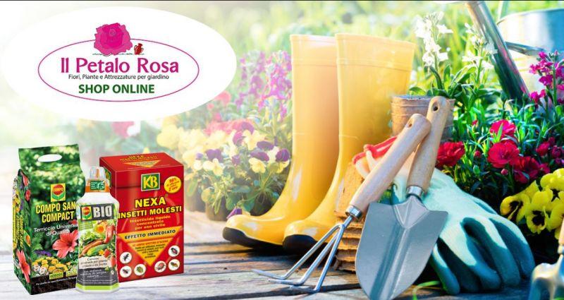 IL PETALO ROSA BUDONI vende online - offerta prodotti e attrezzature giardinaggio e agricoltura