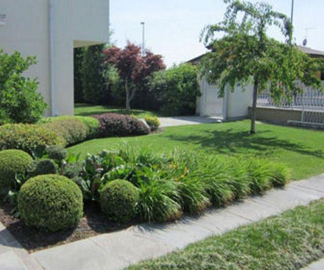 Offerta occasione bonus verde detrazione giardino piante spazio verde fiori agrisole crema