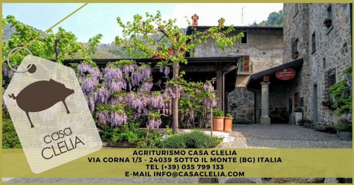 FERRUCCIO Sotto il Monte Giovanni XXIII foto 1